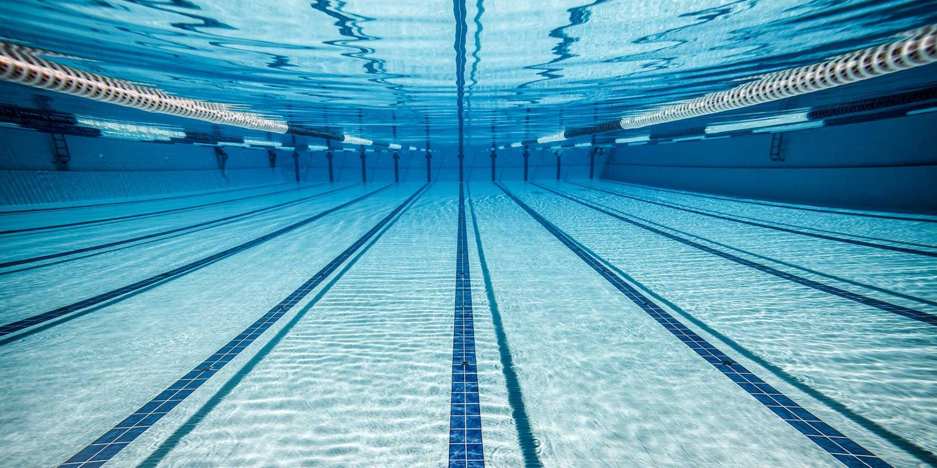 olympic swimming pool lanes. brilliant olympic pool thoughts stay in your lane swimming  inside olympic lanes